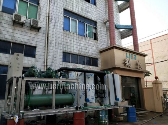 5t-50t Per Day Flake Ice Plant with Ce Approved pictures & photos