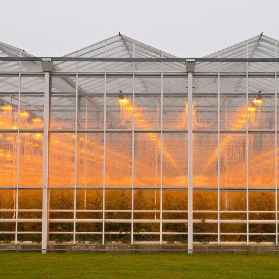 Commercial Multi-Span Aluminum Profile Glass Greenhouse