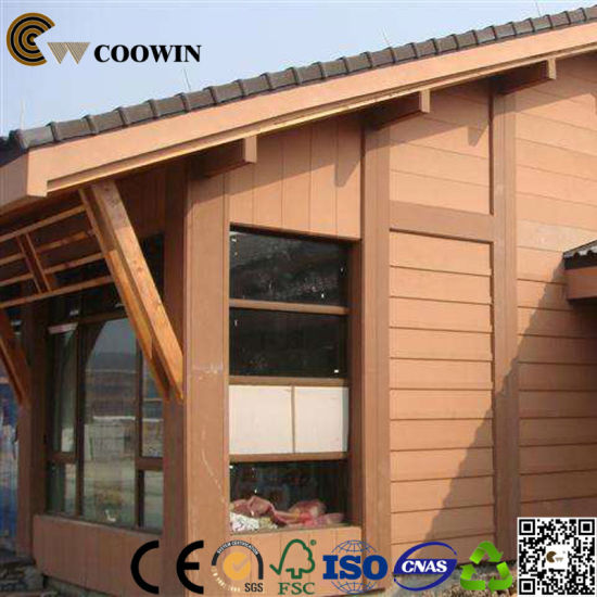 Hot Outdoor Decoration WPC Wall Panel (TF 04S)