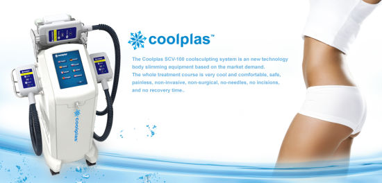 Cryolipolysis Anti-Obesity Beauty Equipment Dual Cryo Handles Portable Freeze Fat pictures & photos