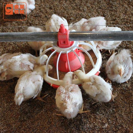 Complete Automatic Poultry Farm Equipment