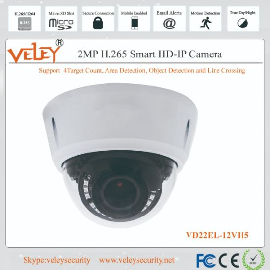 CCTV Video Camera Sony Starlight Waterproof Security IR IP Dome pictures & photos