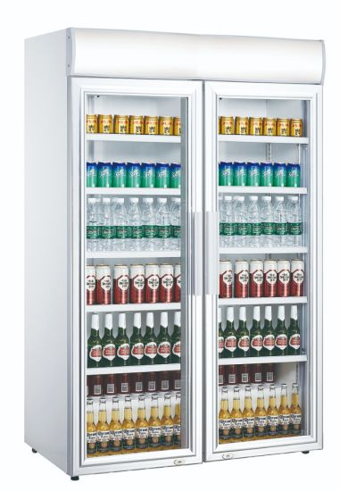 Double Glass Door Vertical Visi Drink Cooler Canopy Upright Cooler (LG-1040CF)