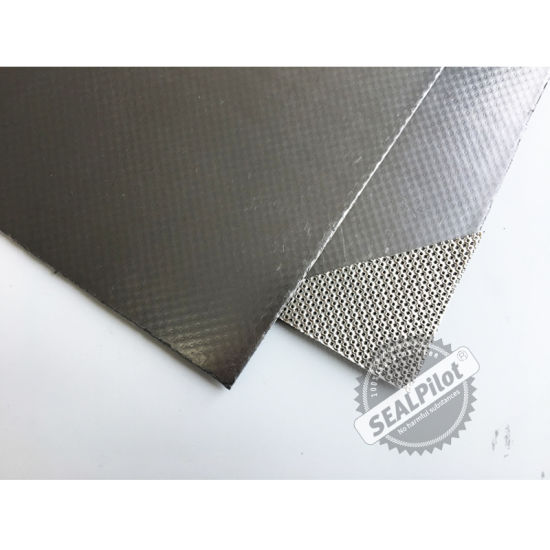 Metal Insert Flexible Composite Graphite Sheet/Gasket Made in China