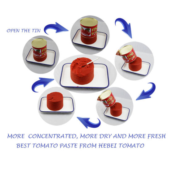 2018 New Crop Tomato Paste with Natural Color and Natural Taste