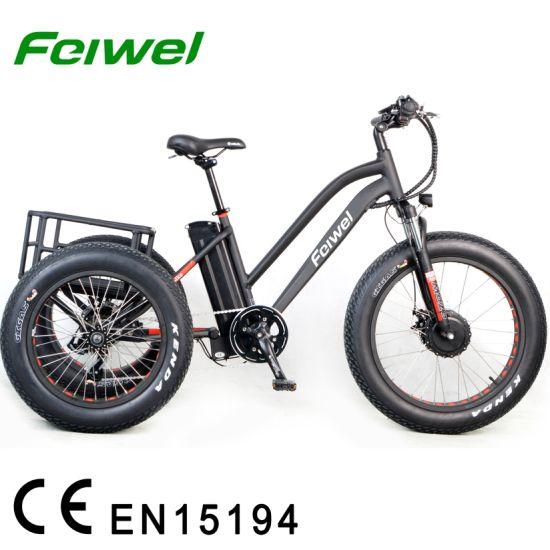China 48V500W Three Wheels Electric Bike - China Three Wheel ...
