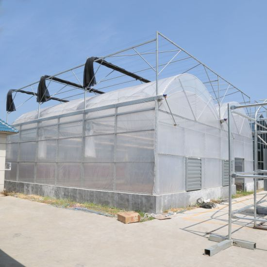 Tunnel Farming Greenhouse with Shading System