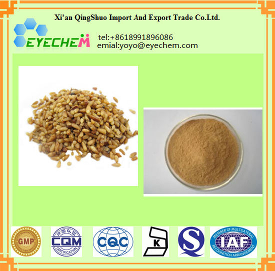 Seman Platycladi Extract/Chinese Arborvilea Seed Extract Powder pictures & photos