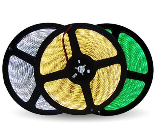 LED Low Voltage Lamp Belt