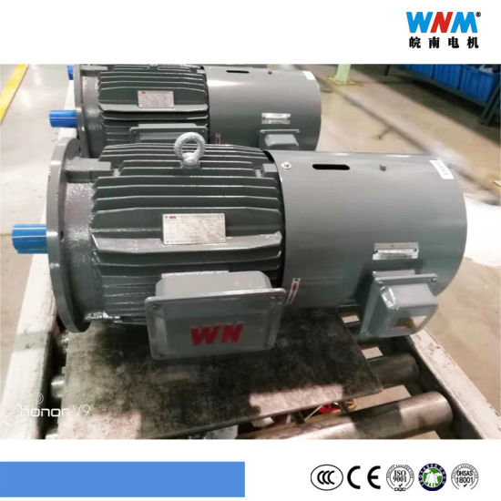 Variable Frequency VFD Control Three Phase AC Eletcric Motor Yxvf315 45kw 55kw 75kw 90kw 110kw 132kw 160kw 185kw 200kw 220kw Wnm Motor