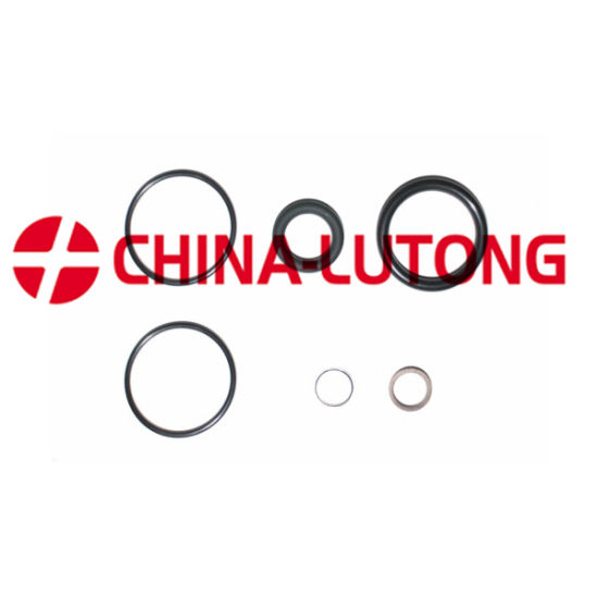 China Fuel Injection Pump Rebuild Kit-Ve Diesel Pump Repair