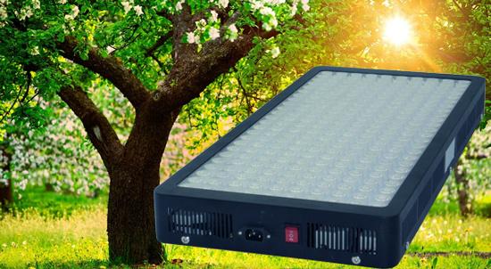 China 1000watt 1200W LED Grow Light with Big Yield Veg
