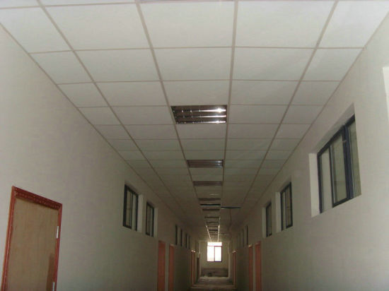 Ceiling Tiles Anti Sagging Fireproof