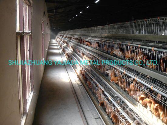 Wire Mesh Galvanized Chicken Cage