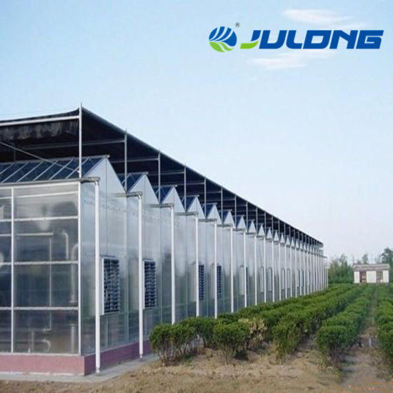 High Quality Polycarbonate Greenhouse with Hydroponics System for Tomato/Lettuce/Pepper/Herb/Flower/Seedling Planting