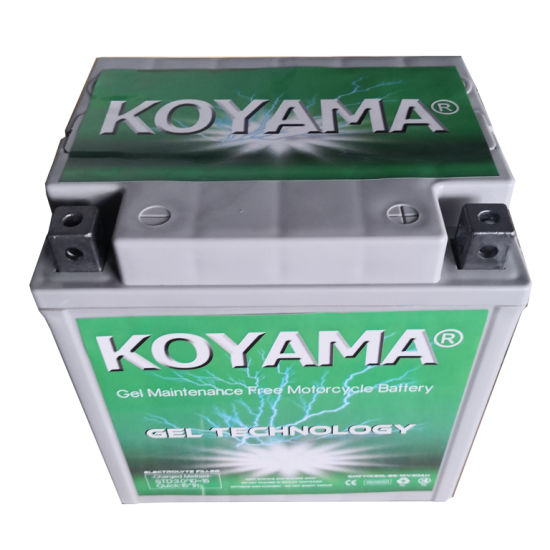 12V30ah Sealed Maintenance Free Gel Motorcycle Battery Yix30L-BS pictures & photos