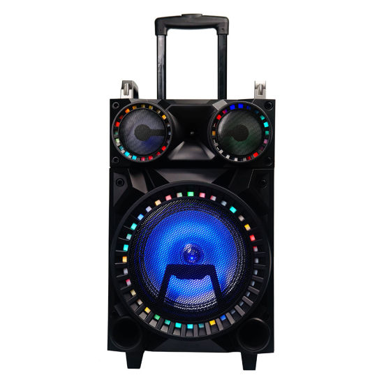 10 Inch Wooden Stereo Professional Bluetooth Party Trolley Speaker