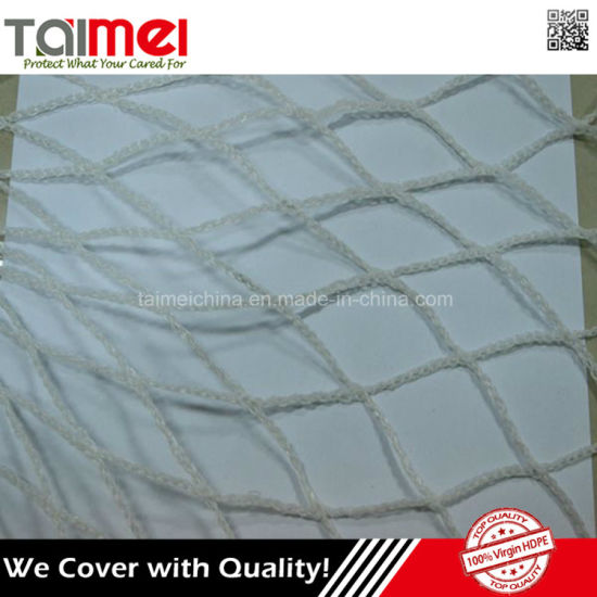 HDPE Anti Bird Protection Netting with UV Stabilizer pictures & photos