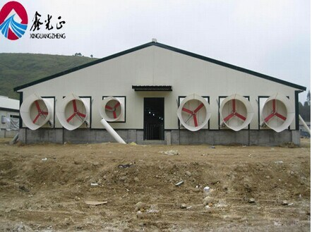 Prefab Steel Frame Structure Pig Farm House