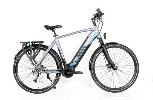 Green Power CE Certification 36V 250W Electric Bike