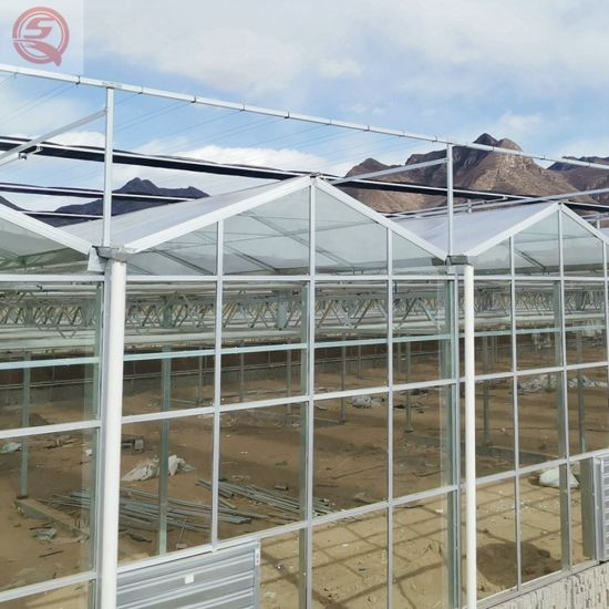 Agriculture Polycarbonate Sheet Hydroponic Greenhouse for Cucumber Planting