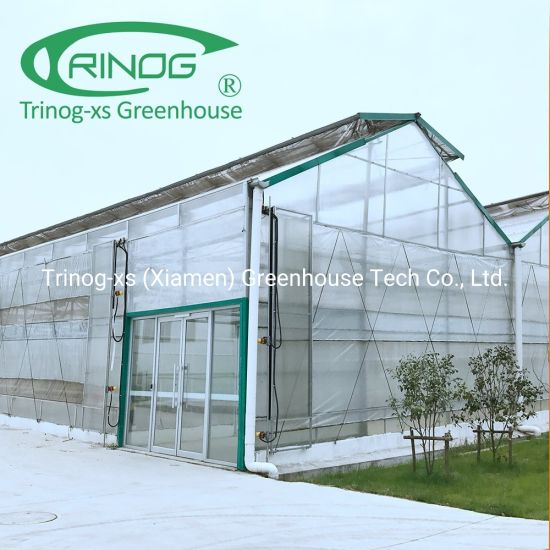 Conventional Commercial Used heated Polycarbonate Greenhouse for sale
