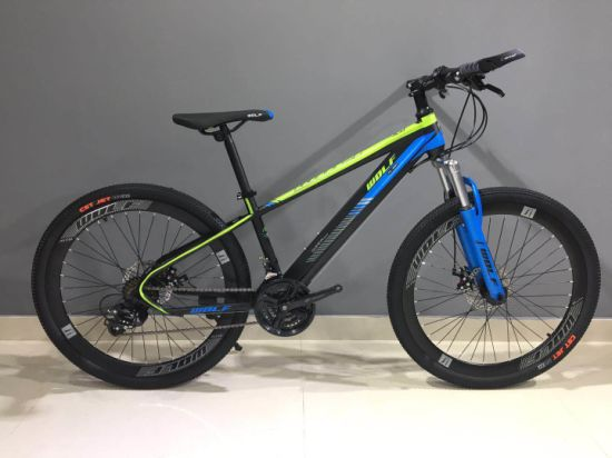 High Quality Carbon Steel Mountain Bike/Bicycle MTB Be-014