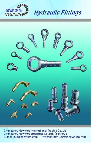 Metric Zinc Plated Hydraulic Fitting Banjo Bolt for Hose pictures & photos