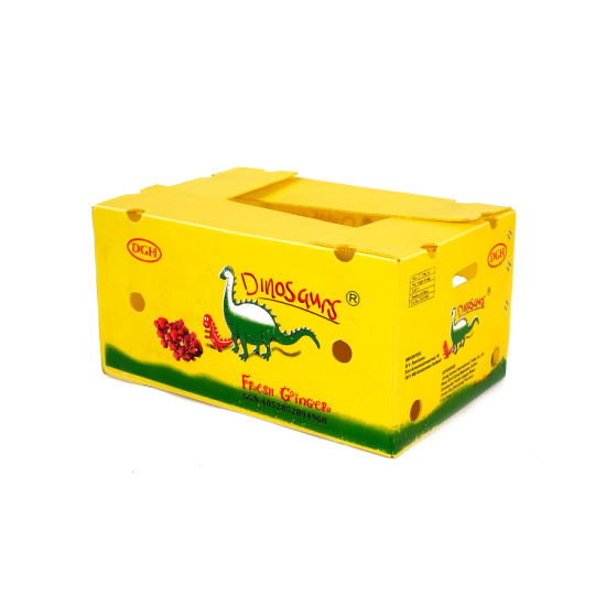 Factory Direct PP Corrugated Fruit/Vegetable Box