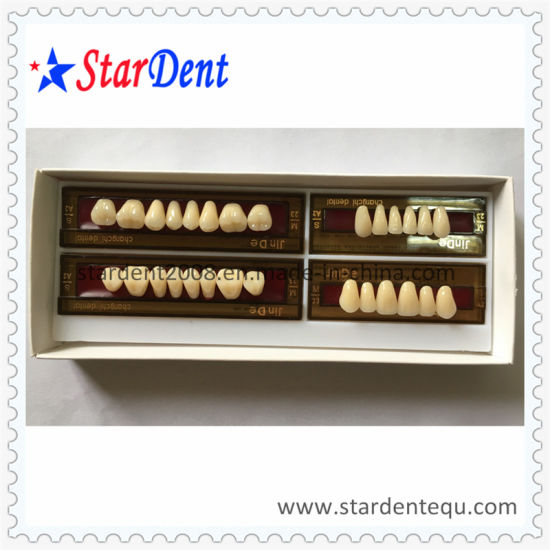 China Ce Approved Multi-Layer Synthetic Resin Teeth - China