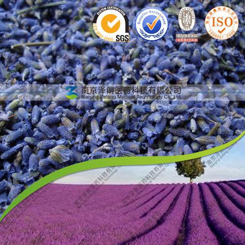 FDA Registered Top Grade Dried Blue Lavender Bud for Tea