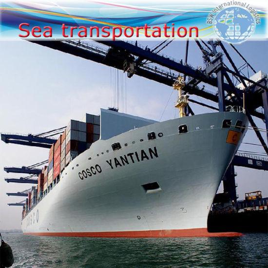 Sea Shipping, Warehouse Storage, Customs Declaration, Shipping Agent.