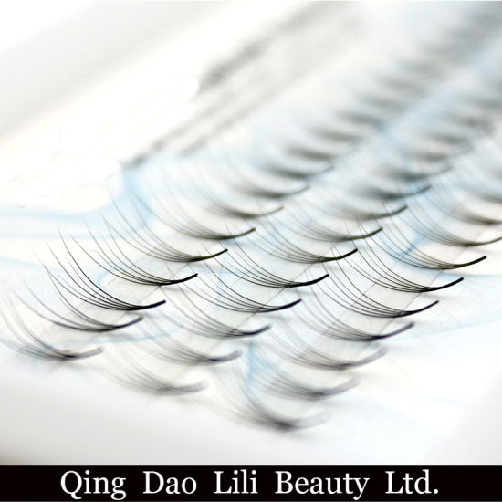 Tdance Lashes Own Brand Hand Made Pre-Made 3D 0.07 Cc Curl 11mm Long Root Volume Fans pictures & photos