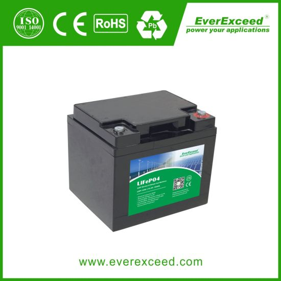 Everexceed Ldp Series UPS / Solar / Lighting / Telecom / Medical / 12V 100ah Rechargeable Deep Cycle LiFePO4 Lithium Iron Battery