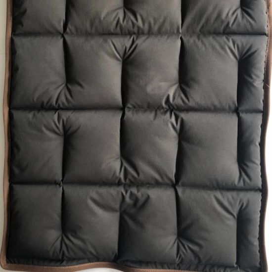 20d 470t Weft Stretch FL Ripstop Nylon Taffeta Double Layer Fabric Downproof for Down Garment