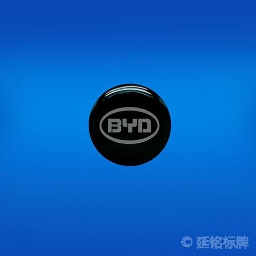Custom Waterproof Epoxy Resin Badges/Dome Labels