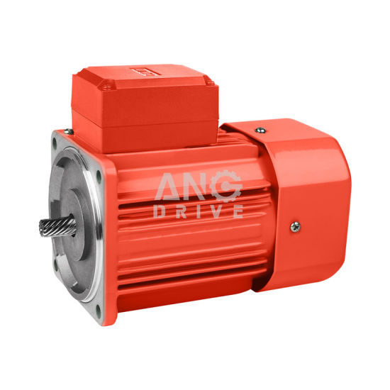 AC Asynchronous 100V 230V Induction Electric Lawn Mower Motor