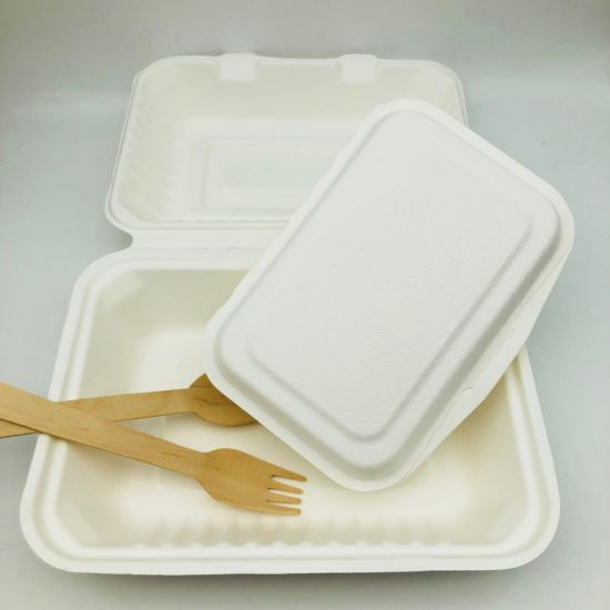 Popular Standard Size 9 X 6 Inches Fast Food Boxes Biodegradable Regular Food Container pictures & photos