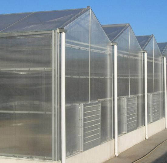 Agricultural Automatic PC Greenhouse with Hydroponic System