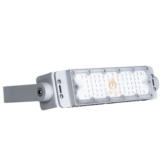Water-Proof IP65 50W LED Flood Light for Outdoor Garden Aquarium Building Security Tunnel Lighting
