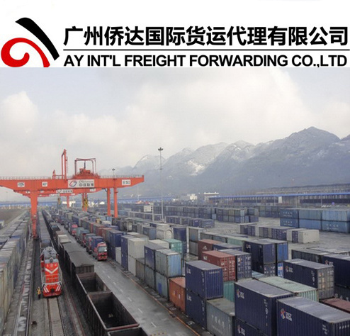 Railway Shipping to Kyrgyzstan from China pictures & photos