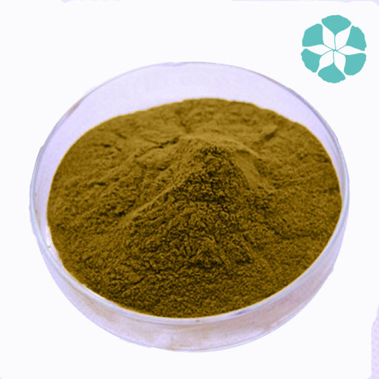 Green Coffee Bean Extract / Coffea Robusta Extract / Chlorogenic Acid pictures & photos