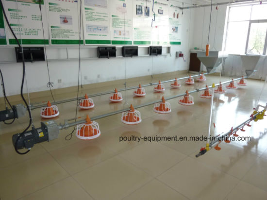 High Quality Lower Price Poultry Farm Equipment for Broiler Chicken