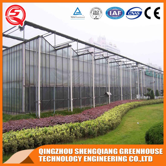 Steel Frame Agriculture/Commercial/Industrial Multi Span PC Sheet Greenhouse with Hydroponics System for Tomato/Strawberry/Cucumber/Sightseeing/Exhibition