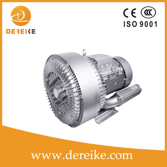 11kw Dereike High Vacuum Pump for The Dhb 820c 011 for The Oil-Gas Running Piping