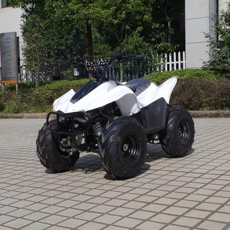 Attractive Type Cheaper 4 Wheeler Kids 50cc Quad ATV (A05)