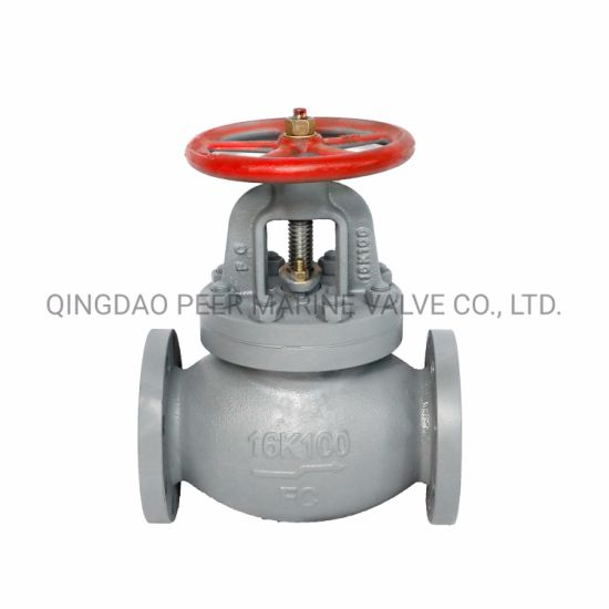 JIS F-7377 FC Straight-Through Globe Check Valve 16K100