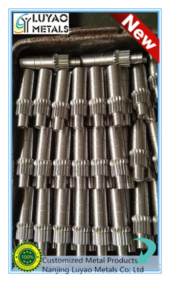 Custom Worm Gear Metal/Brass/Steel/Stainless Steel Worm Gear pictures & photos