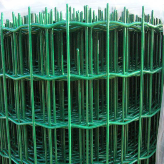 Euro Fence, Wave Welded Mesh Fence, Holland Fence pictures & photos