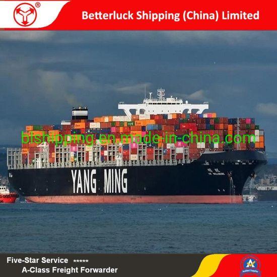 sea freight rates Shenzhen to Pakistan Karachi logistics shipping agent